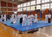 Аикидо семинар по повод 500 години Куманово