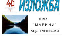 """Ацо Таневски со изложба на слики """"Марини"""""""