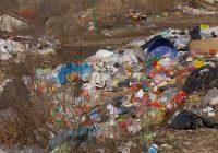 60 диви депонии го опколуваат Куманово (видео)